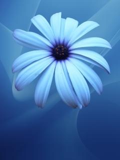 Великолепная сине-голубая картинка так и просится на дисплей Нокии 5300